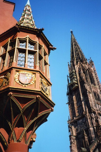 freiburg-looking-up